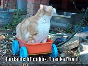 Portable litter box. Thanks Mom!