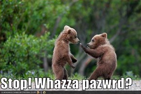 Stop! Whazza pazwrd?