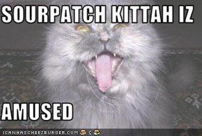 SOURPATCH KITTAH IZ  AMUSED