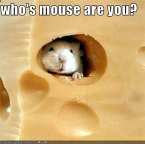 who's mouse are you?