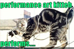 performance art kitteh  performs....