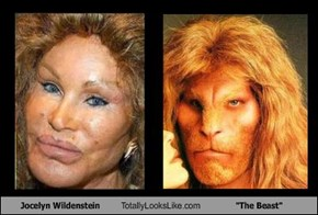 "Jocelyn Wildenstein Totally Looks Like ""The Beast"""