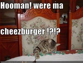 Hooman! were ma cheezburger !?!?