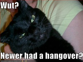 Wut?  Newer had a hangover?