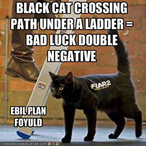 BLACK CAT CROSSING PATH UNDER A LADDER = BAD LUCK DOUBLE NEGATIVE