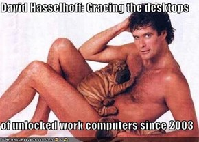 David Hasselhoff: Gracing the desktops   of unlocked work computers since 2003