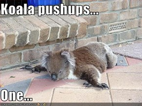 Koala pushups...  One...