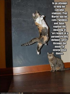 "In an attempt to help his calculus students, Prof. Martin had his cats, Twinkles and Splat , explain the meaning of ""arc length of a parametrically defined curve"" through the media of interpretive dance."