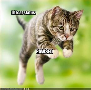 LOLcat status: