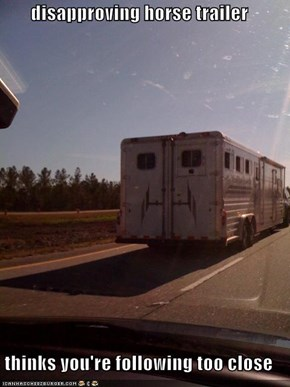disapproving horse trailer  thinks you're following too close