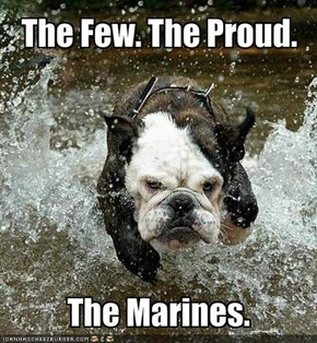 The Few. The Proud.