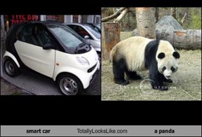 smart car Totally Looks Like a panda