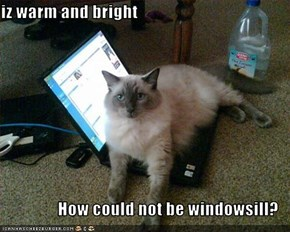 iz warm and bright  How could not be windowsill?