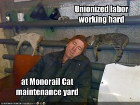 Unionized labor working hard