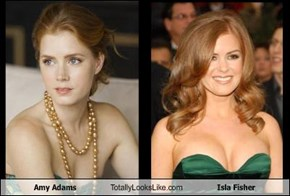 Amy Adams Totally Looks Like Isla Fisher