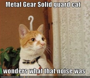 Metal Gear Solid guard cat    wonders what that noise was