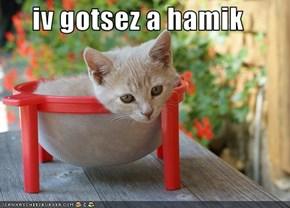 iv gotsez a hamik