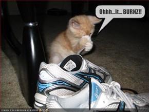 Ohhh...it... BURNZ!!
