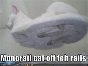 Monorail cat off teh rails