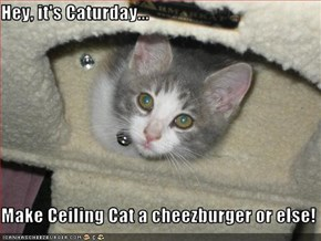 Hey, it's Caturday...  Make Ceiling Cat a cheezburger or else!