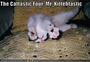 The Cattastic Four: Mr. Kittehtastic