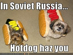 In Soviet Russia...  Hotdog haz you