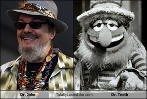 Dr. John Totally Looks Like Dr. Teeth