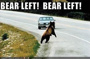 BEAR LEFT!  BEAR LEFT!