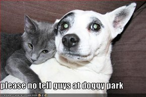 please no tell guys at doggy park