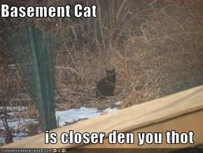 Basement Cat  is closer den you thot