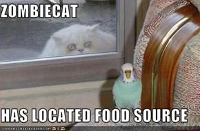 ZOMBIECAT  HAS LOCATED FOOD SOURCE