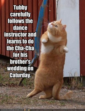 Tubby carefully follows the dance instructor and learns to do the Cha-Cha for his brother's wedding on Caturday.