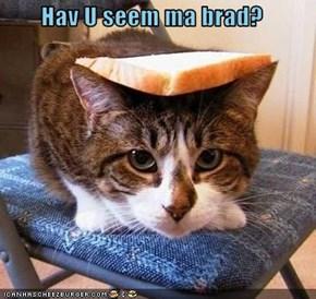 Hav U seem ma brad?