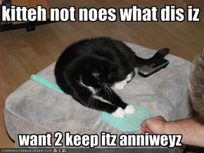 kitteh not noes what dis iz