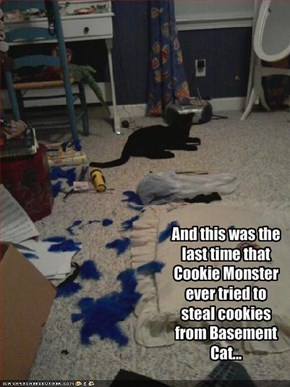 And this was the last time that Cookie Monster ever tried to steal cookies from Basement Cat...