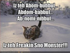 Iz teh Abom-bubbul...Abdom-babbul...Ab-nomi-nibbul...
