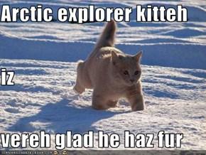 Arctic explorer kitteh iz vereh glad he haz fur