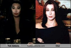 Tish Addams Totally Looks Like Cher
