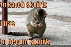 to katch skuirlz I has tu becum skuirlz