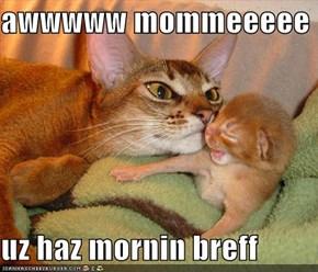 awwwww mommeeeee  uz haz mornin breff