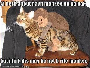 Ai herd about havn monkee on da bak  but i tink dis may be not b rite monkee