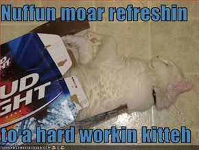 Nuffun moar refreshin  to a hard workin kitteh