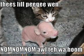 thees lill peegee wen  NOMNOMNOM awl teh wa hoom