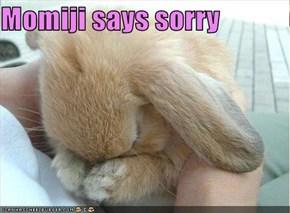 Momiji says sorry
