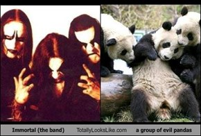 Immortal (the band) Totally Looks Like a group of evil pandas
