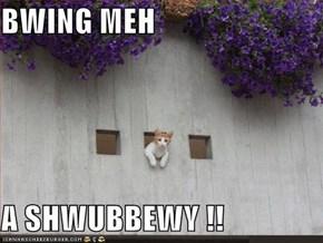 BWING MEH  A SHWUBBEWY !!