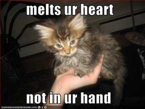 melts ur heart           not in ur hand