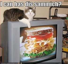I can has dis sammich?