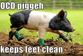 OCD piggeh   keeps feet clean