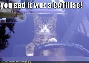 you sed it wuz a CATillac!